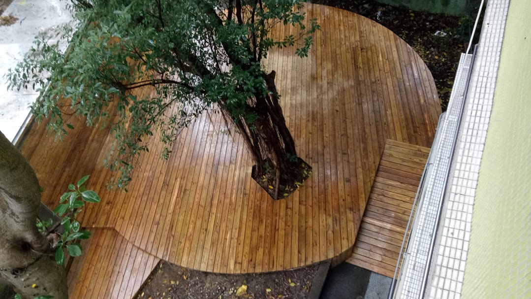 木平台,永平高中南方松木平台