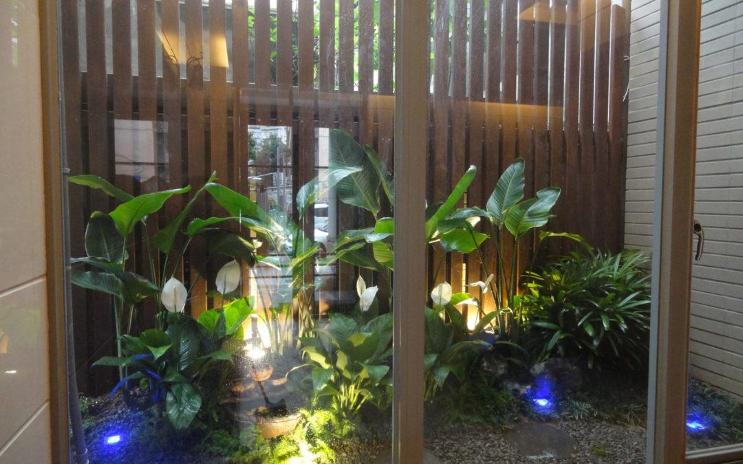 鐵木-師大林園景觀工程-太平洋鐵木格柵
